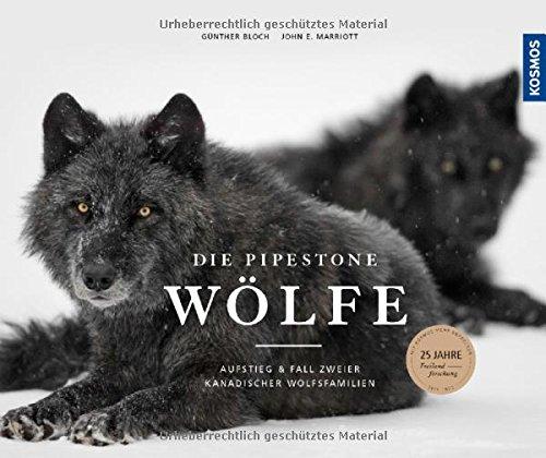 Die Pipestone-Wölfe: Aufstieg und Fall zweier kanadischer Wolfsfamilien